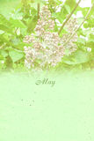 Stylized vintage background for calendar month. May Stock Images