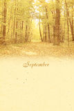 Stylized vintage background for calendar month. September Stock Photography