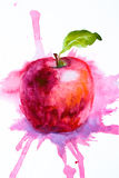 Stylized watercolor apple illustration. Stylized watercolor red apple illustration Stock Photo