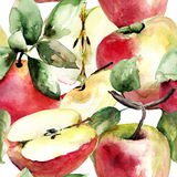Stylized watercolor apple illustration Stock Images