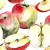 Stylized watercolor apple illustration Royalty Free Stock Image
