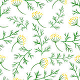 Stylized watercolor seamless pattern  sprigs of greenery, dill or fennel. Vector flower dill seamless background. Herbs food ingri Royalty Free Stock Photo