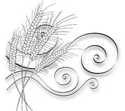 Stylized Wheat and Wind. Four hand drawn stylized wheat stalks bending in the wind stock illustration