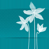 Stylized white Lillies Royalty Free Stock Images