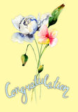 Stylized wild flowers with title congratulation Royalty Free Stock Photography