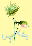 Stylized wild flowers with title congratulation Stock Image