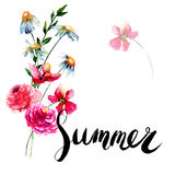 Stylized wild flowers with title Summer Royalty Free Stock Photo