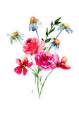 Stylized wild flowers. Watercolor illustration Royalty Free Stock Photo
