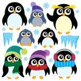 Stylized winter penguins set 1 Stock Image