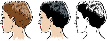 Stylized woman in 3 styles Royalty Free Stock Photos