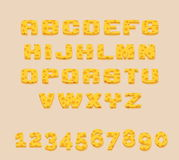 Stylized yummy yellow vector Swiss cheese abc alphabet and digits. Use letters to make your own text Stock Image