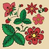 Stylizowana broderia kwiaty, jagody i truskawka liście, ilustracja wektor