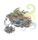 Stylizowana kobiety fryzura. ilustracji