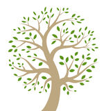 Stylizowana kolorowa drzewna ikona Obrazy Royalty Free