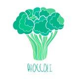 stylizowana ręka rysujący brokuły ilustracyjni Ilustracja Wektor