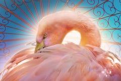 Stylizowanego flaminga złożona sztuka royalty ilustracja