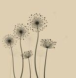 Stylizowani dandelions. Obraz Stock
