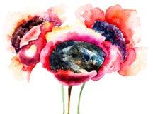 Stylizowani maczków kwiaty Fotografia Stock