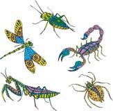 Stylizowani pstrobarwni insekty Obrazy Stock
