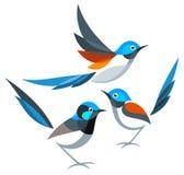 Stylizowani ptaki - Fairywrens ilustracji