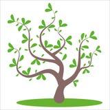 stylizowany abstrakcjonistyczny lata drzewo ilustracja wektor