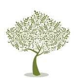 stylizowany drzewo ilustracja wektor