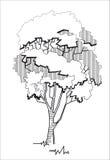 Stylizowany drzewo 2 Zdjęcia Stock