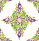 Stylizowany gwiazdowy bezszwowy kwiecisty wzór Fotografia Royalty Free