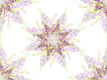 Stylizowany gwiazdowy kwiecisty wzór Fotografia Stock