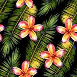 Stylizowany palmowy tło ilustracji