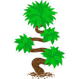 Stylizowany Przegięty drzewo Zdjęcia Stock