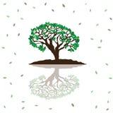 Stylizowany wektorowy drzewo Zdjęcia Royalty Free
