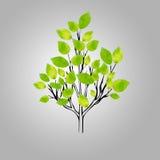 Stylizowany wektorowy drzewo Ilustracja Wektor