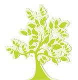 Stylizowany zieleni drzewo Zdjęcie Stock