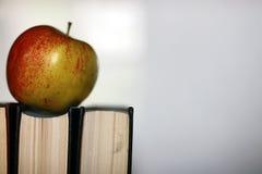 Stylo grunge de pomme de pile de livre d'éducation de photo d'effet Images stock