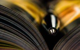 Stylo sur un livre ouvert Billet de banque remodelé nouvelle par libération du dollar bibliothèque, éducation, image stock