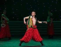 Stylosa手姿势蒙古舞蹈 库存图片