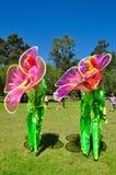 Styltafotgängare: Den lösa älvornas rikefestivalen på konungen parkerar Perth Royaltyfri Fotografi