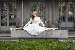 Stylu życia portret elegancka młoda kobieta zdjęcia royalty free
