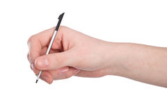 Stylus Stock Photo
