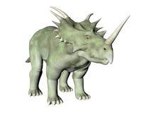 Styracosaurus Stock Image