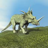 Styracosaurus dinosaur - 3D render Royalty Free Stock Images