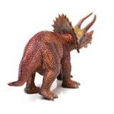 Styracosaurus dinosaura postaci zabawka Obrazy Stock