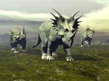Styracosaurus dinosaurs walking - 3D render Stock Photography
