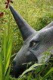 Styracosaurus Stock Images