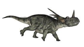 Styracosaurusdinosaurierbetrieb - 3D übertragen Lizenzfreies Stockbild