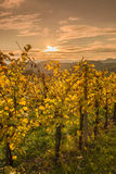 Styria Royalty Free Stock Images
