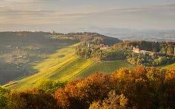 Styrian summer landscape. Styrian Tuscany Vineyard at summer sunset, Austria Stock Photo