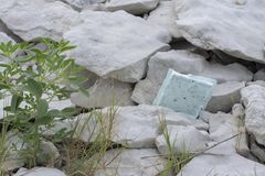 Styrofoam απορρίματα καπακιών που κολλιούνται στους βράχους στοκ φωτογραφία με δικαίωμα ελεύθερης χρήσης