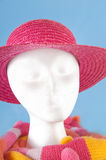 Styrofoam head modeling accessories Stock Photography